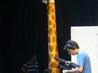La girafe sur le plateau.