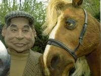 Une marionnette de cheval en mousse taillée dans la masse