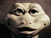 Une marionnette de grenouille en mousse de latex