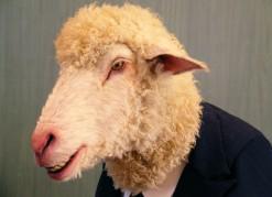 vignette-mouton